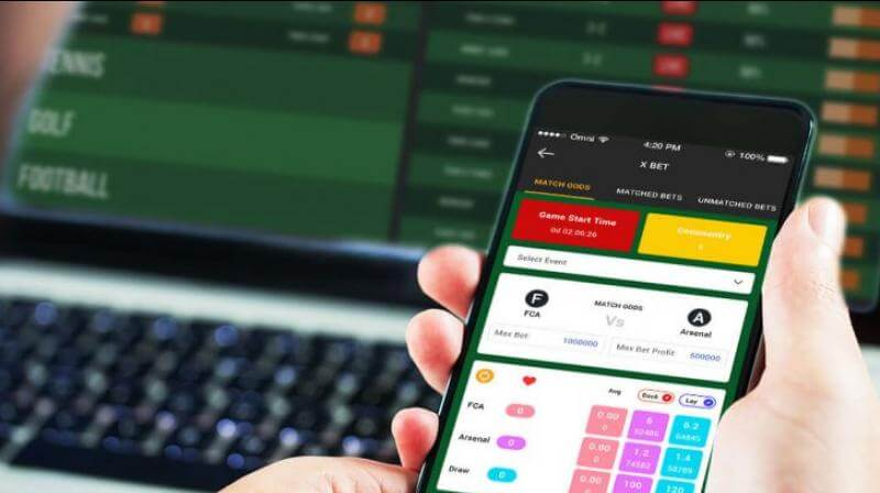 How Online Betting Works in India